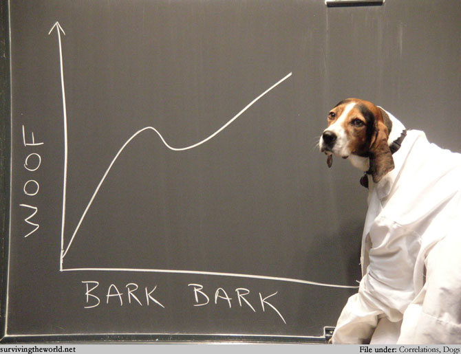 Lesson #450 - Dog Math